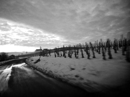 strade_claudio_delmonte